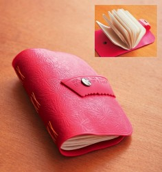 hot water bottle book
