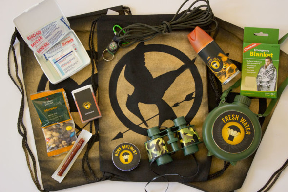 DIY The Hunger Games party ideas