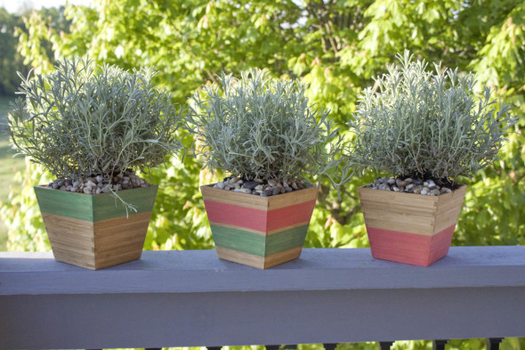 Striped Color Stain Plant Pots