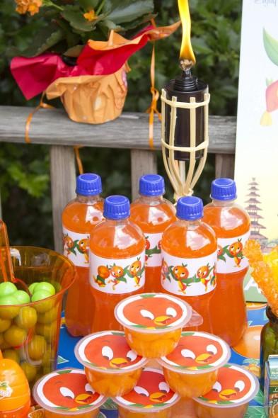 Disney Orange Bird Party 10