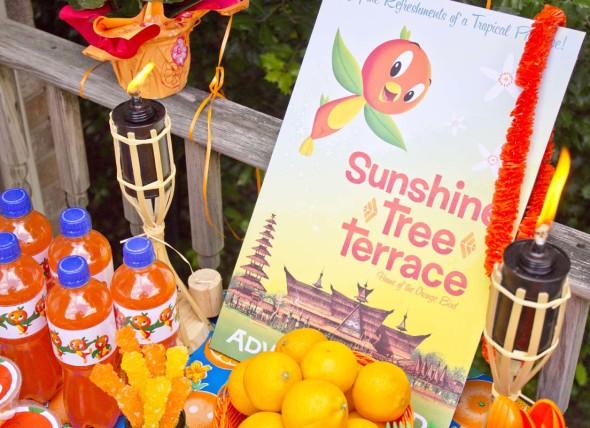 Disney Orange Bird Party 13