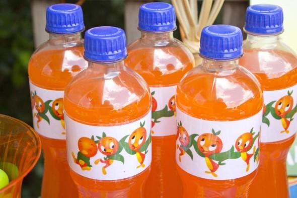 Disney Orange Bird Party 7