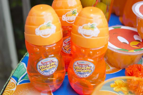 Disney Orange Bird Party 9